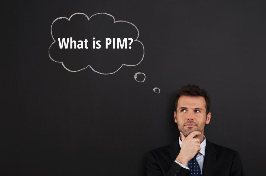 Was ist PIM?